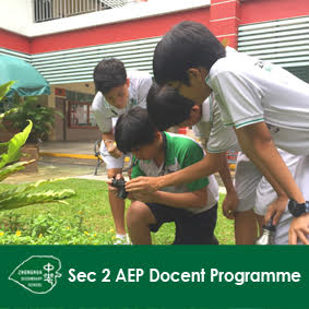 Sec 2 AEP Docent Programme Button.jpg