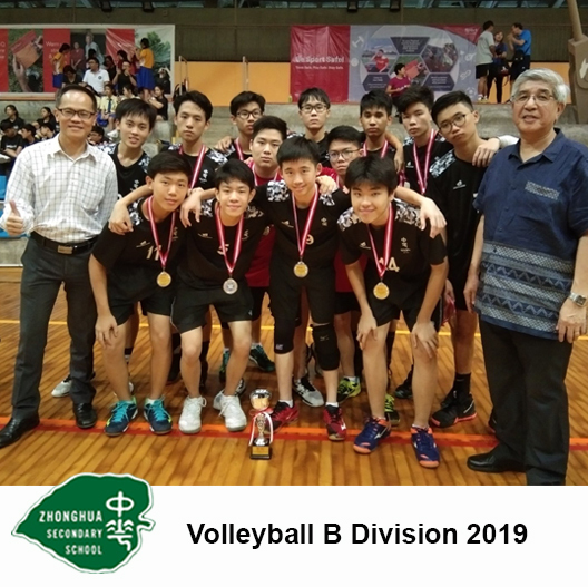 VOLLEYBALL B Division 2019_Buttons.jpg